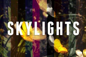 Skylights - Instagram style vintage filters for After Effects